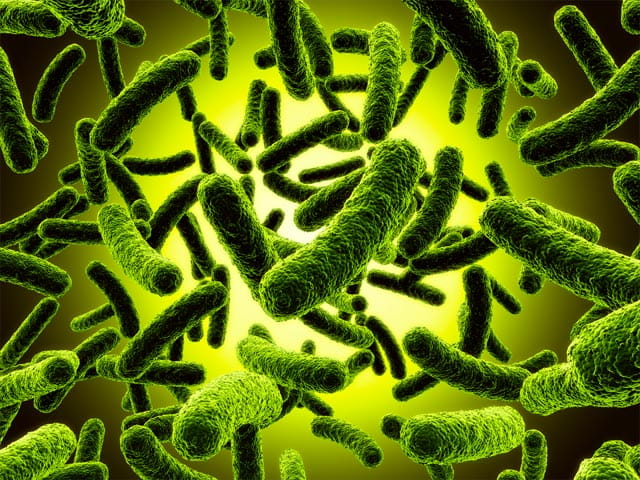 Medical Device Microbiological Testing