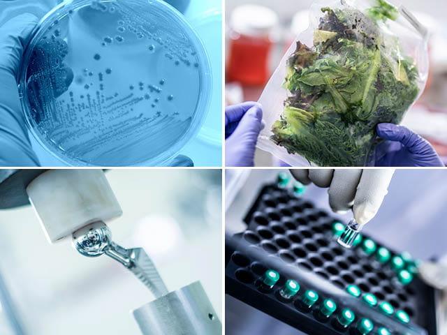 生命科学,抗菌,食品,医疗设备,制药
