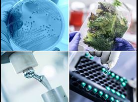 Life Sciences Antimicrobial Food Medical Device Pharmaceutical