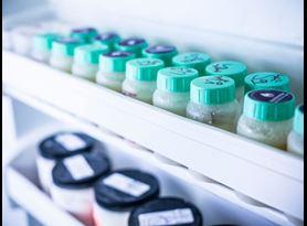 Pesticide Testing and Analysis