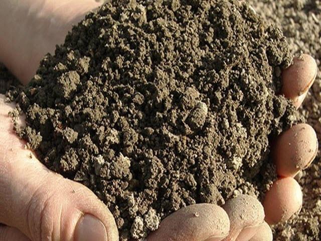 Soil Testing 640x480