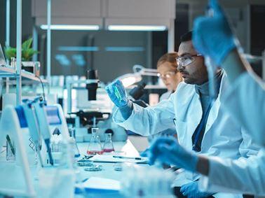 Bioanalytical Testing