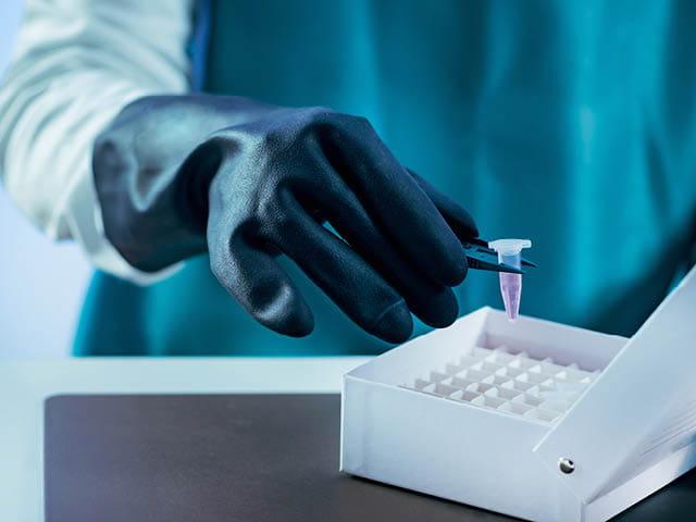 Mycoplasma Safety Testing in Pharmaceutical Products