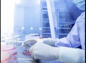 SARS-CoV-2 efficacy testing